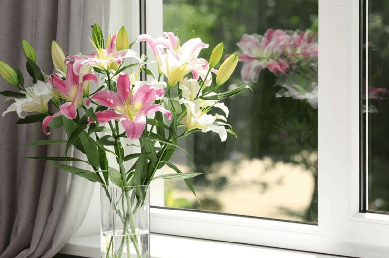 Szyby_ biale okno